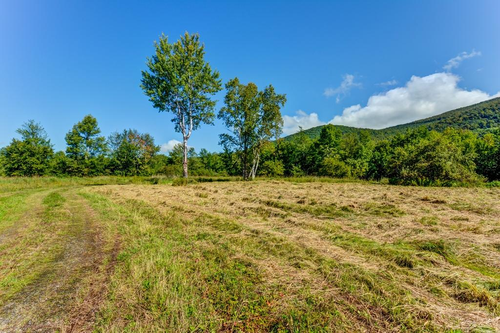 Private Forest on 923 Acres luxury properties