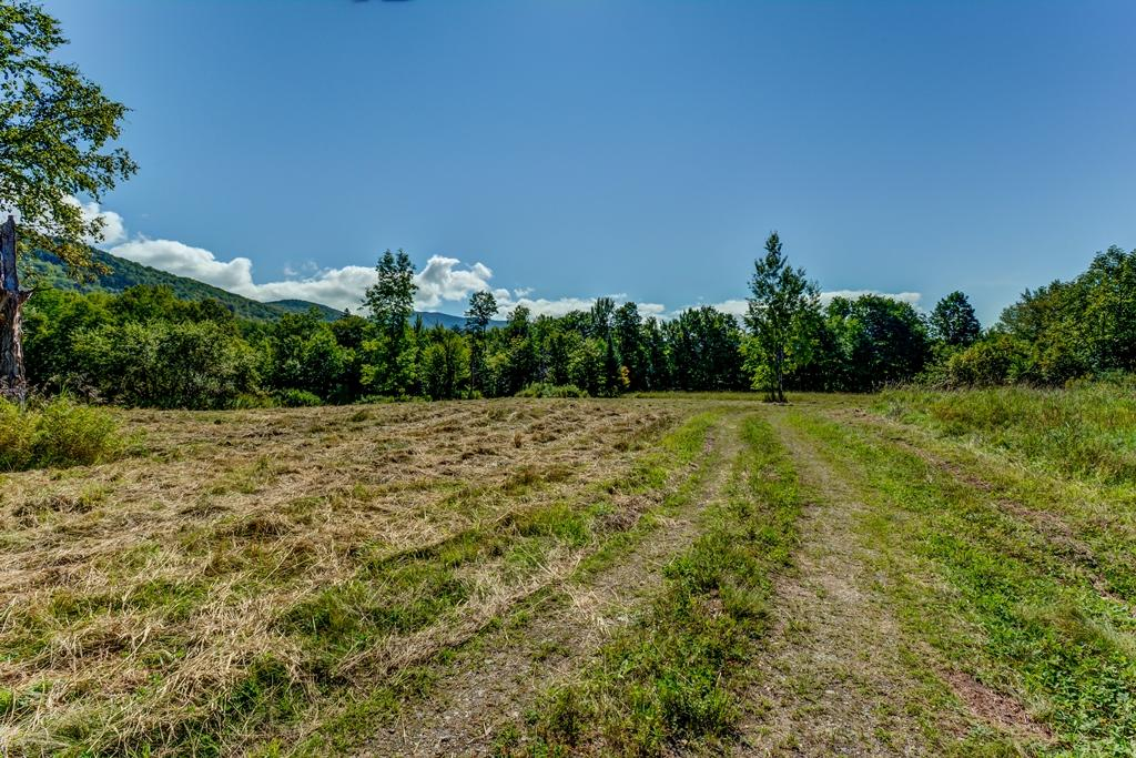 Private Forest on 923 Acres mansions