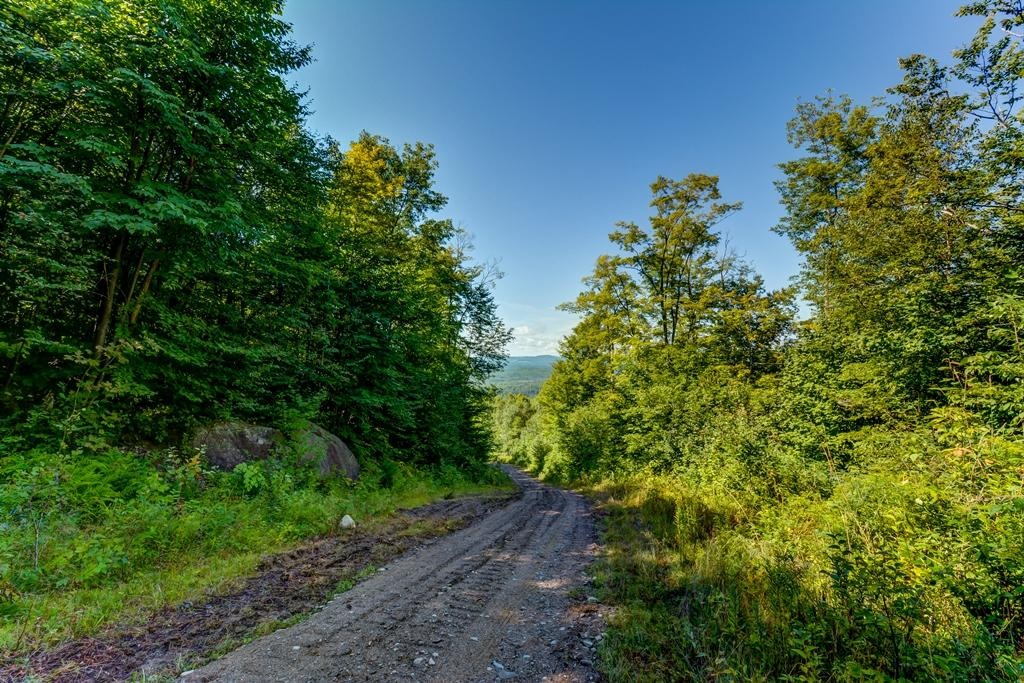 Private Forest on 923 Acres luxury real estate
