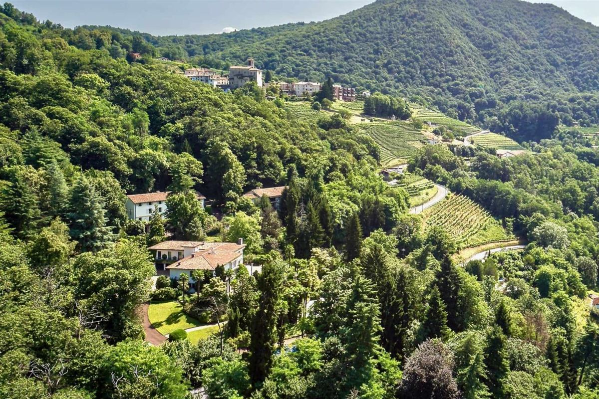 Luxury properties Beautifully Secluded Magnificent Estate