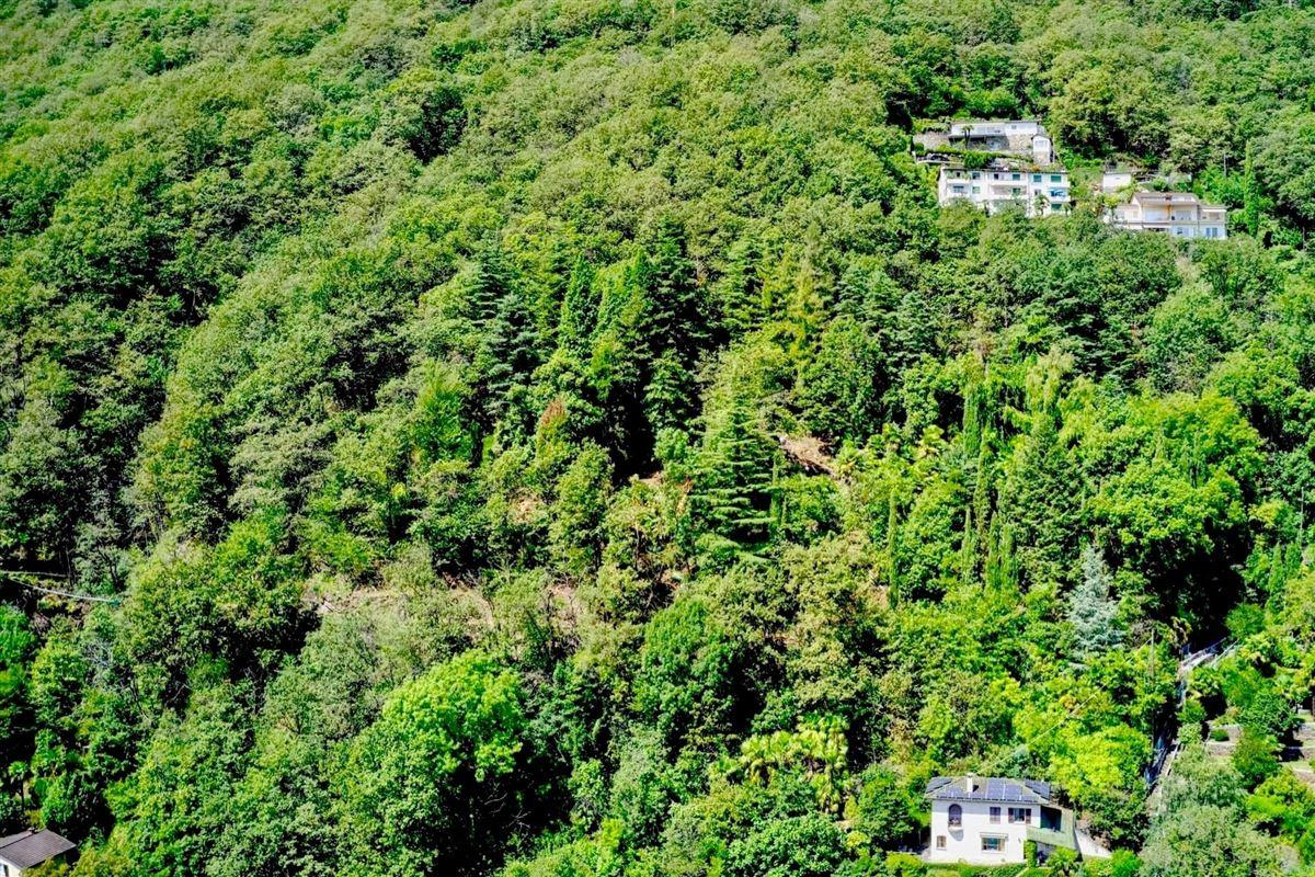 Luxury properties beautiful Plot in unique location