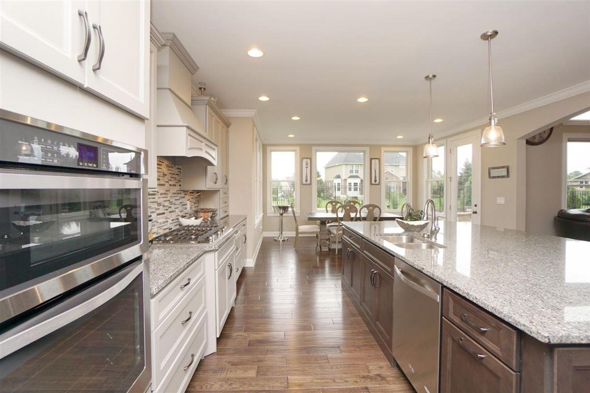 Luxury properties EXQUISITE home in vista pointe