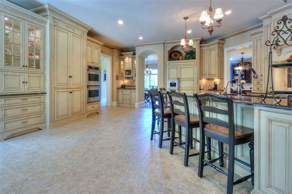 Stunning French Provincial Home in huntersville luxury homes