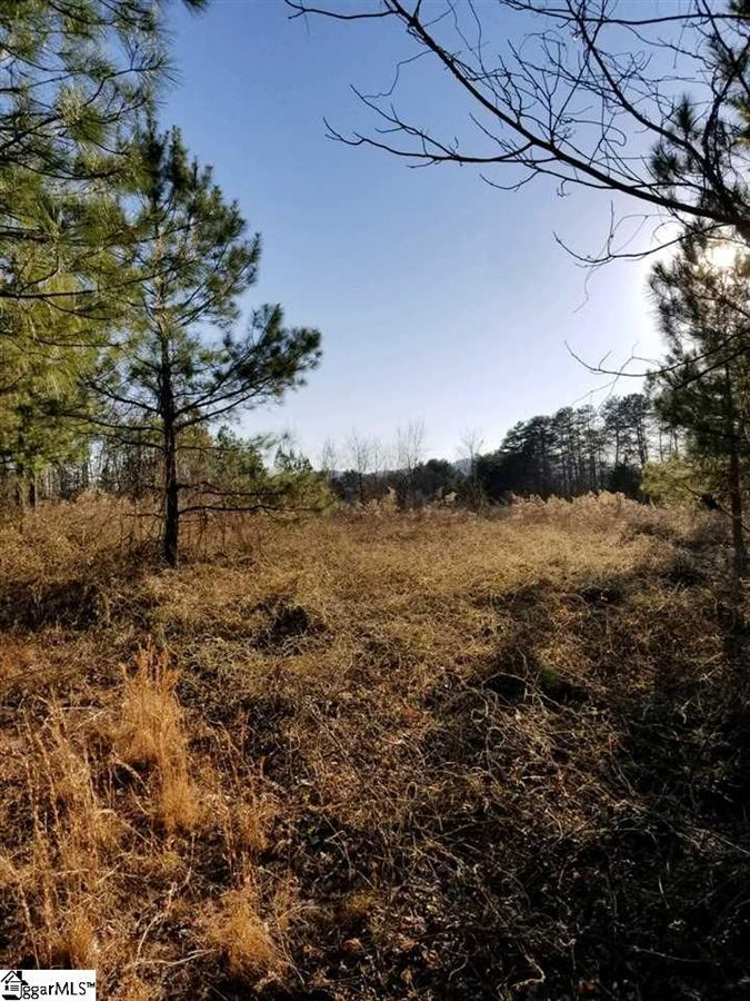 60 unzoned acres for development mansions