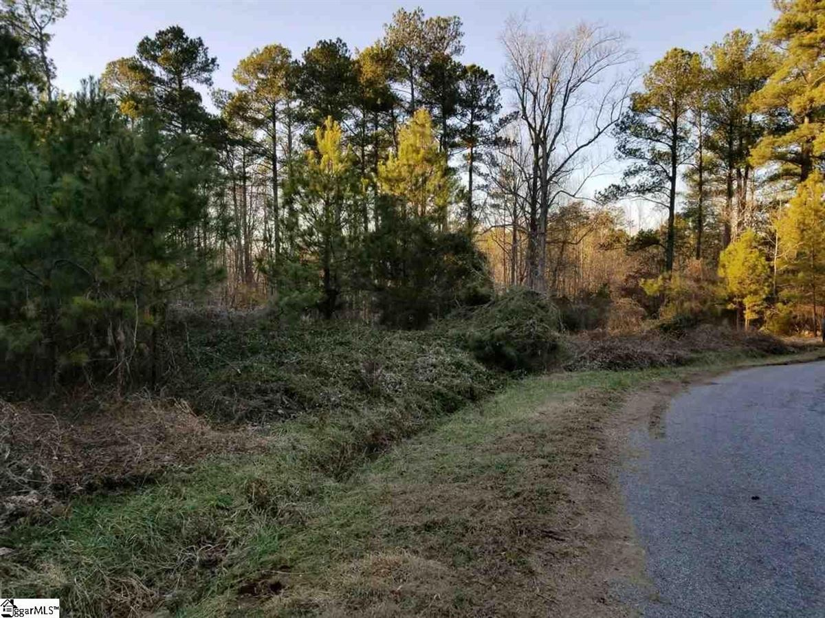 Mansions in 60 unzoned acres for development