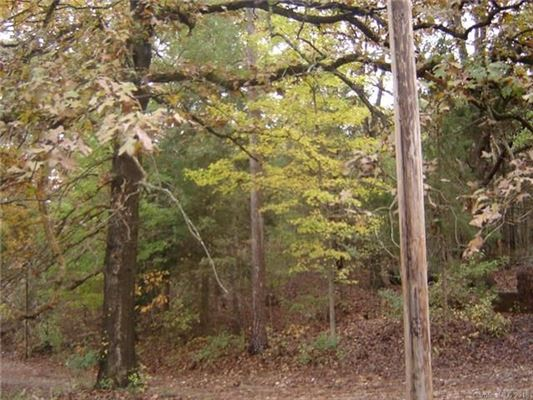 almost 15 acres with possibilities mansions
