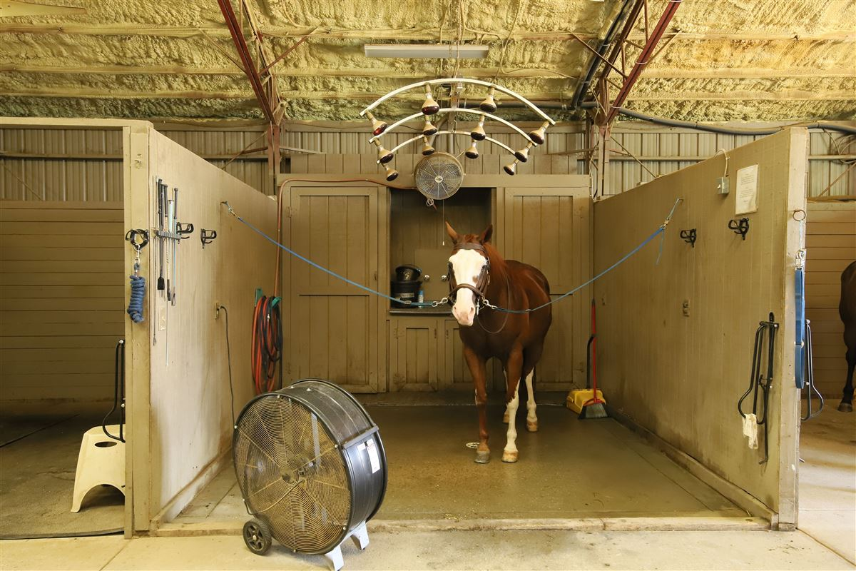 Luxury properties Edelweiss Farm - private residence and world-class equestrian facility