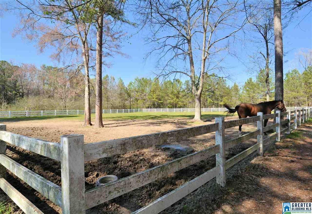 Luxury homes in Fabulous 72 acre Equestrian farm
