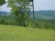 381 acres in beautiful area luxury homes