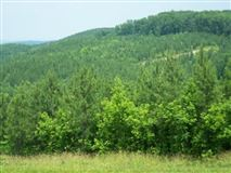 Luxury real estate 381 acres in beautiful area