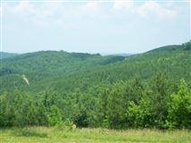 Luxury properties 381 acres in beautiful area