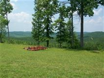 381 acres in beautiful area luxury properties
