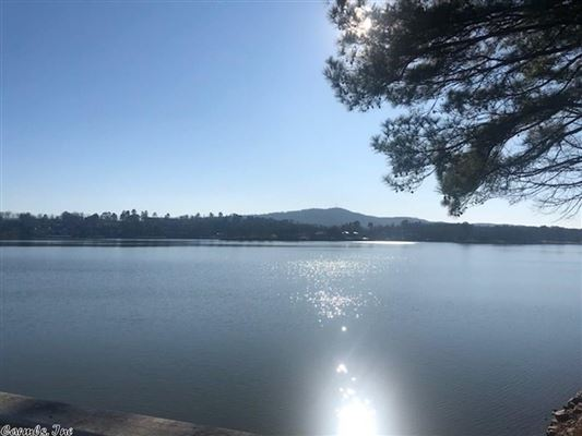 Luxury homes a Rare find on Lake Hamilton