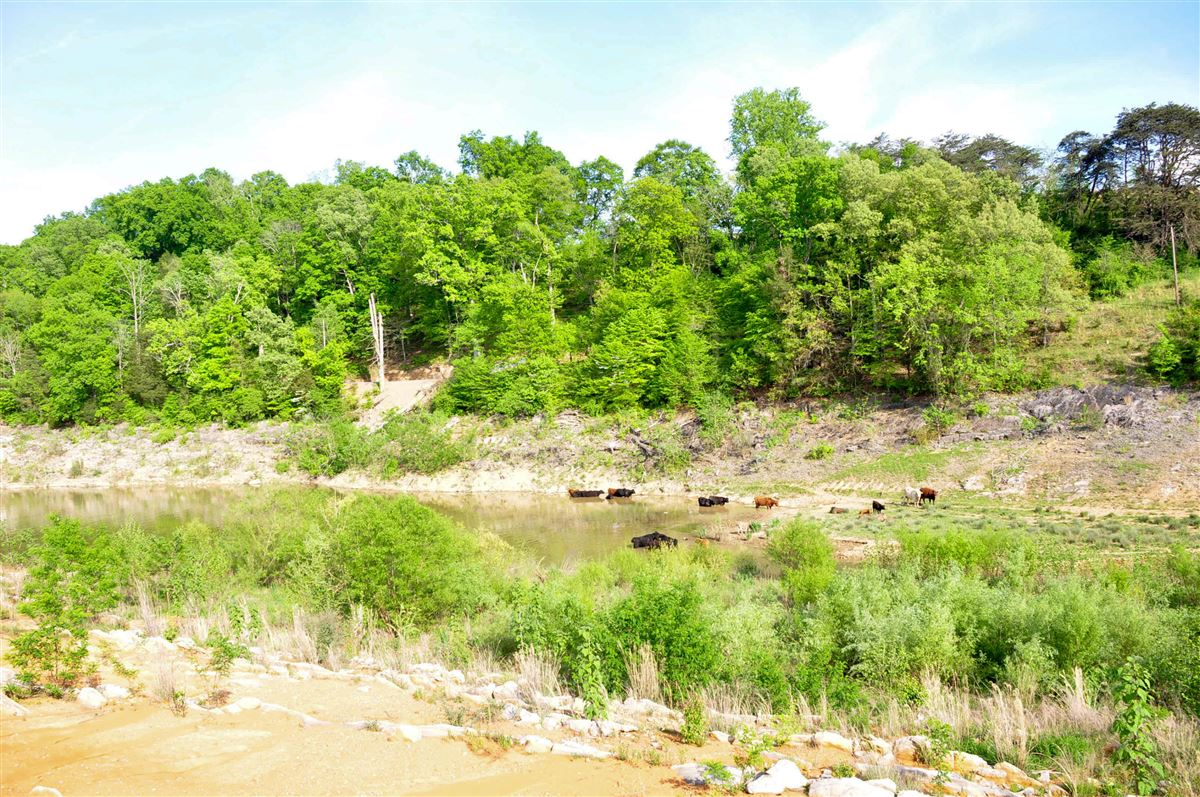 Luxury properties 100 acre property with boone lake frontage