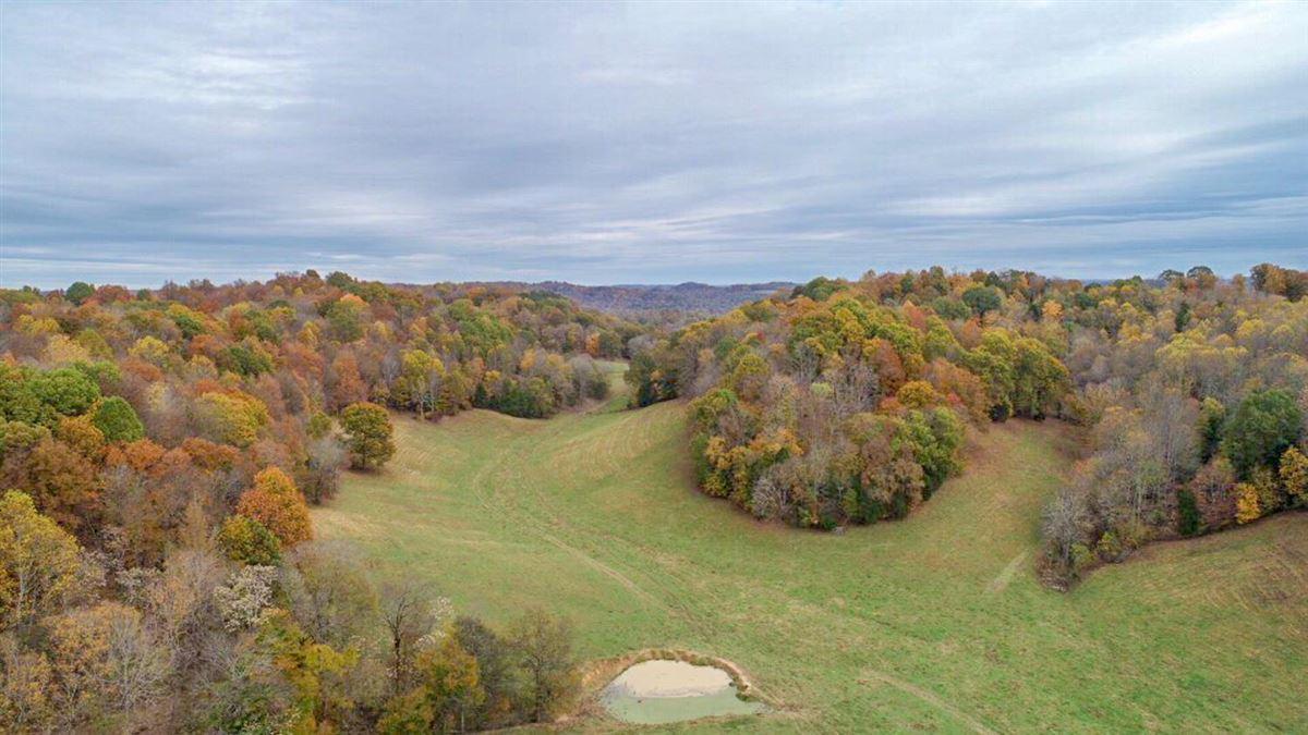 Luxury properties 235 plus acre farm in picturesque setting