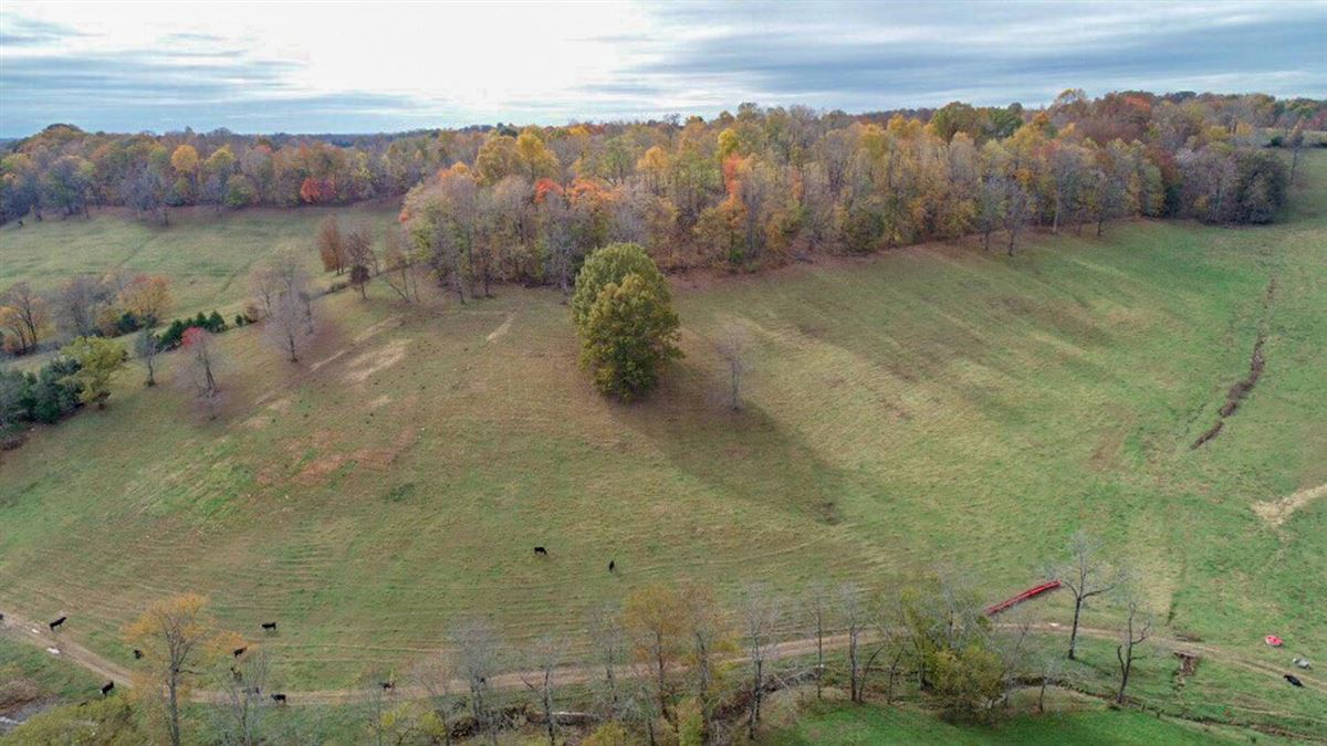 Luxury homes in 235 plus acre farm in picturesque setting