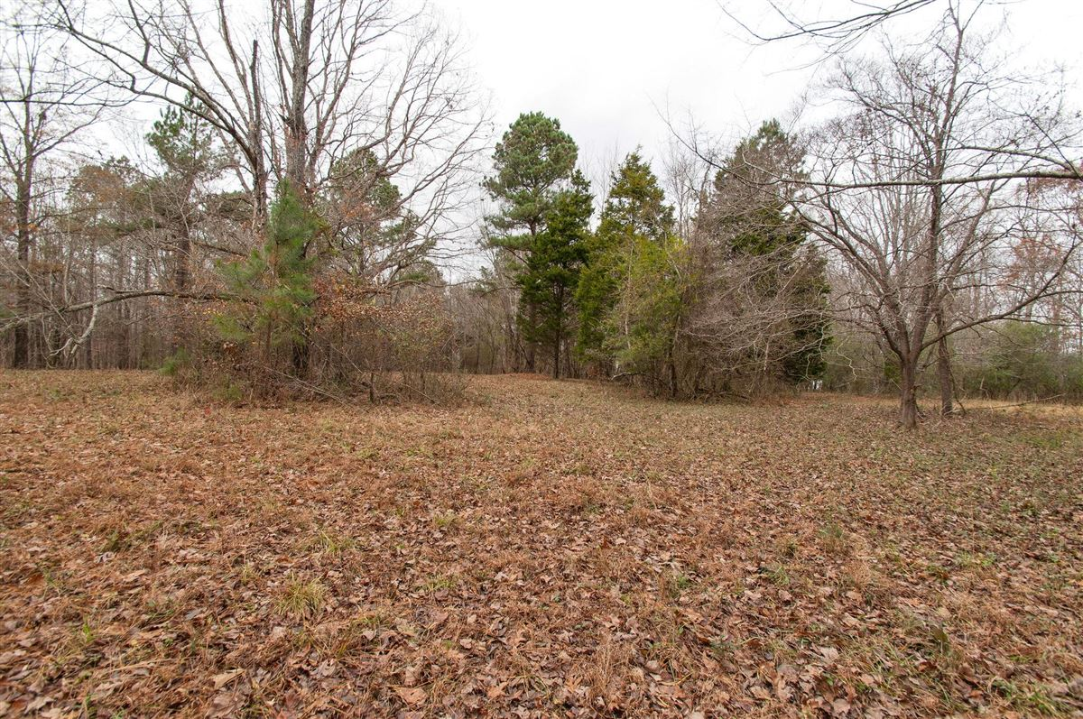 20 acre property in dickson luxury homes