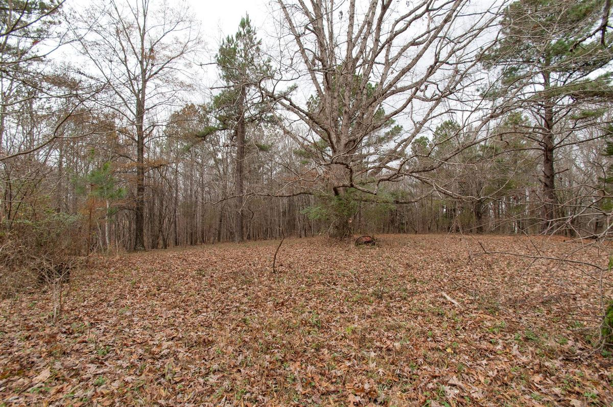Luxury real estate 20 acre property in dickson