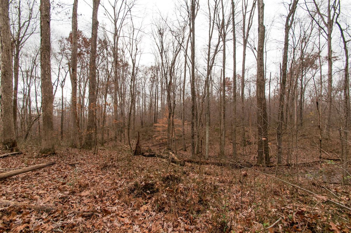 20 acre property in dickson luxury real estate