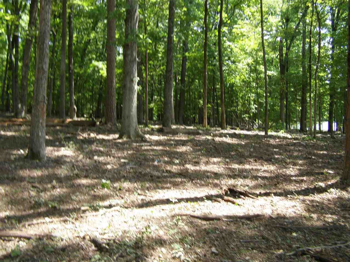 one of the best flat lake lots on Pickwick Lake luxury properties