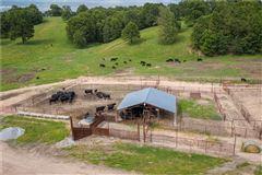 Luxury properties Honey Creek ranch