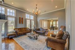 Mansions in Perfection in Spring Creek Subdivision