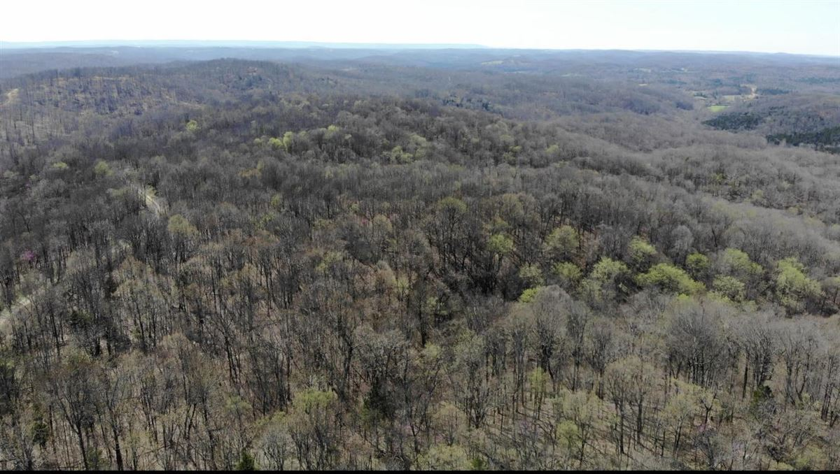 Luxury homes secluded property in batesville