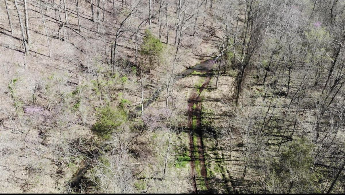 Luxury properties secluded property in batesville