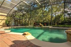 Mansions breathtaking custom outdoor oasis nestled on 1.73 acre lot