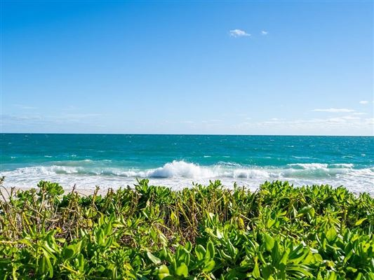 Luxury real estate Casually elegant oceanfront home in vero beach