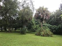 Mansions in Investor Opportunity next to Major Florida Road