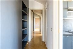 Luxury homes in a splendid penthouse