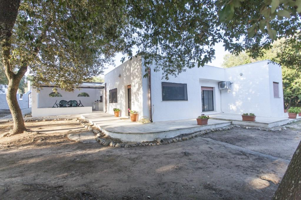 Luxury real estate Farmhouse for sale in Puglia