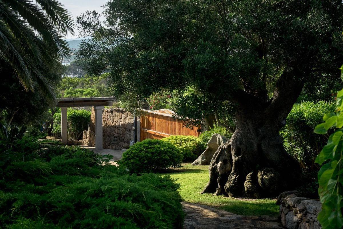 Luxury real estate Villa Fernanda