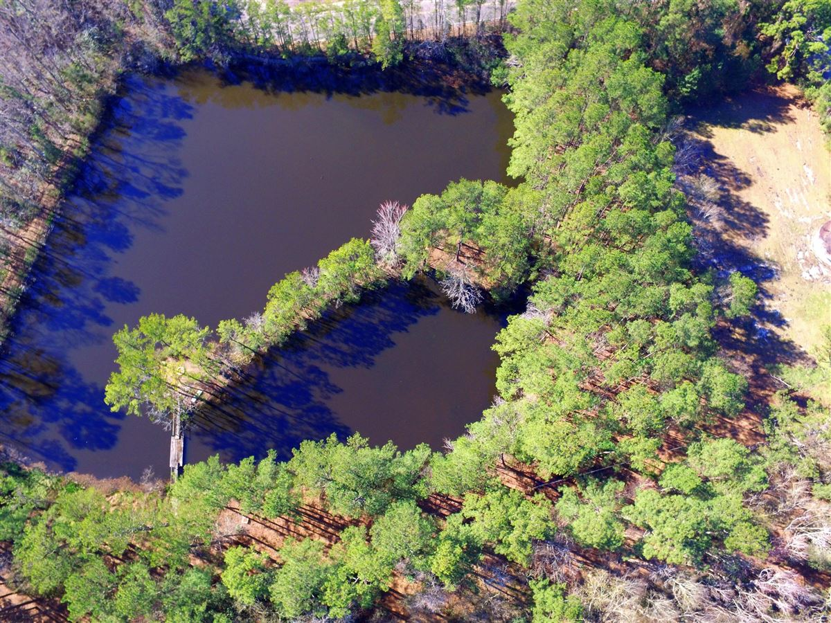 build your lakefront home in the heart of summerville luxury real estate