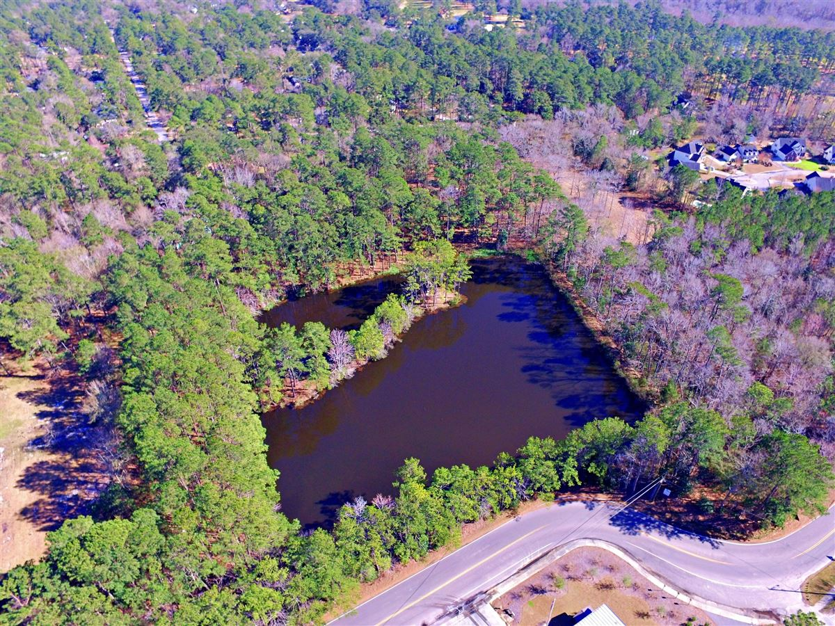 Luxury properties build your lakefront home in the heart of summerville