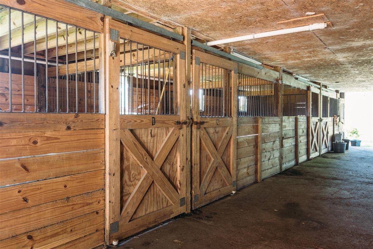 Brick Church Farm in charleston luxury real estate