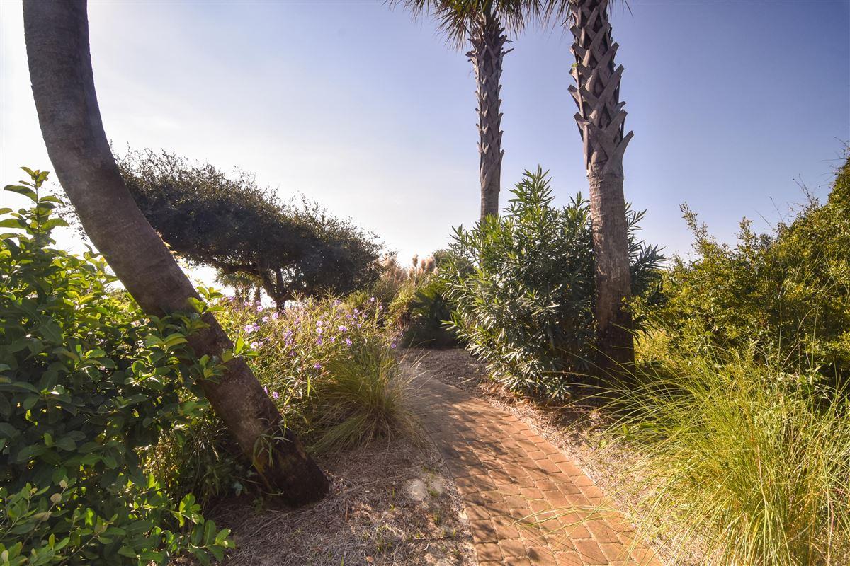 Luxury properties Palm Breeze