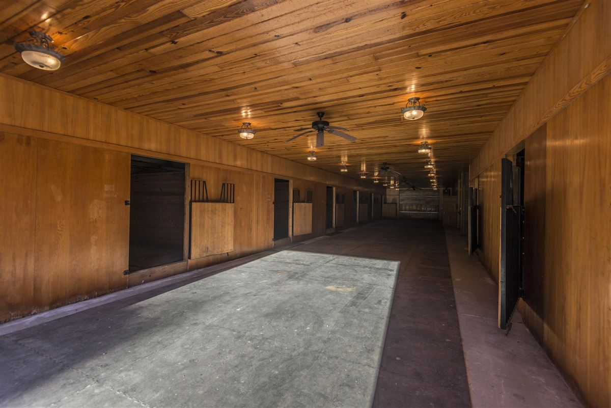 Mansions live the equestrian dream in heart of cottageville