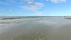 A great opportunity in folly beach luxury real estate