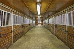 Luxury real estate Stone Horse Farm in tewksbury township
