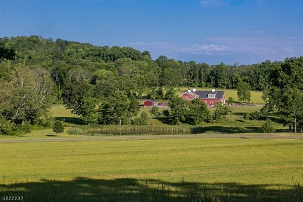 Luxury properties Meadowbrook Farm