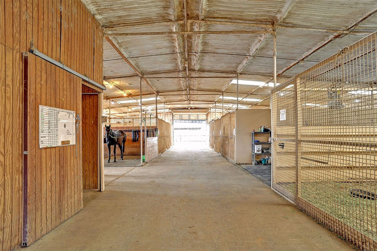 a beautiful equine ranch property  luxury properties