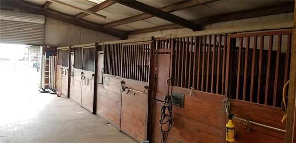 Luxury homes horse property