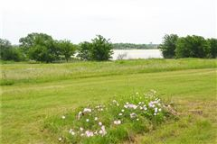 Luxury properties beautiful five-plus acre natural oasis
