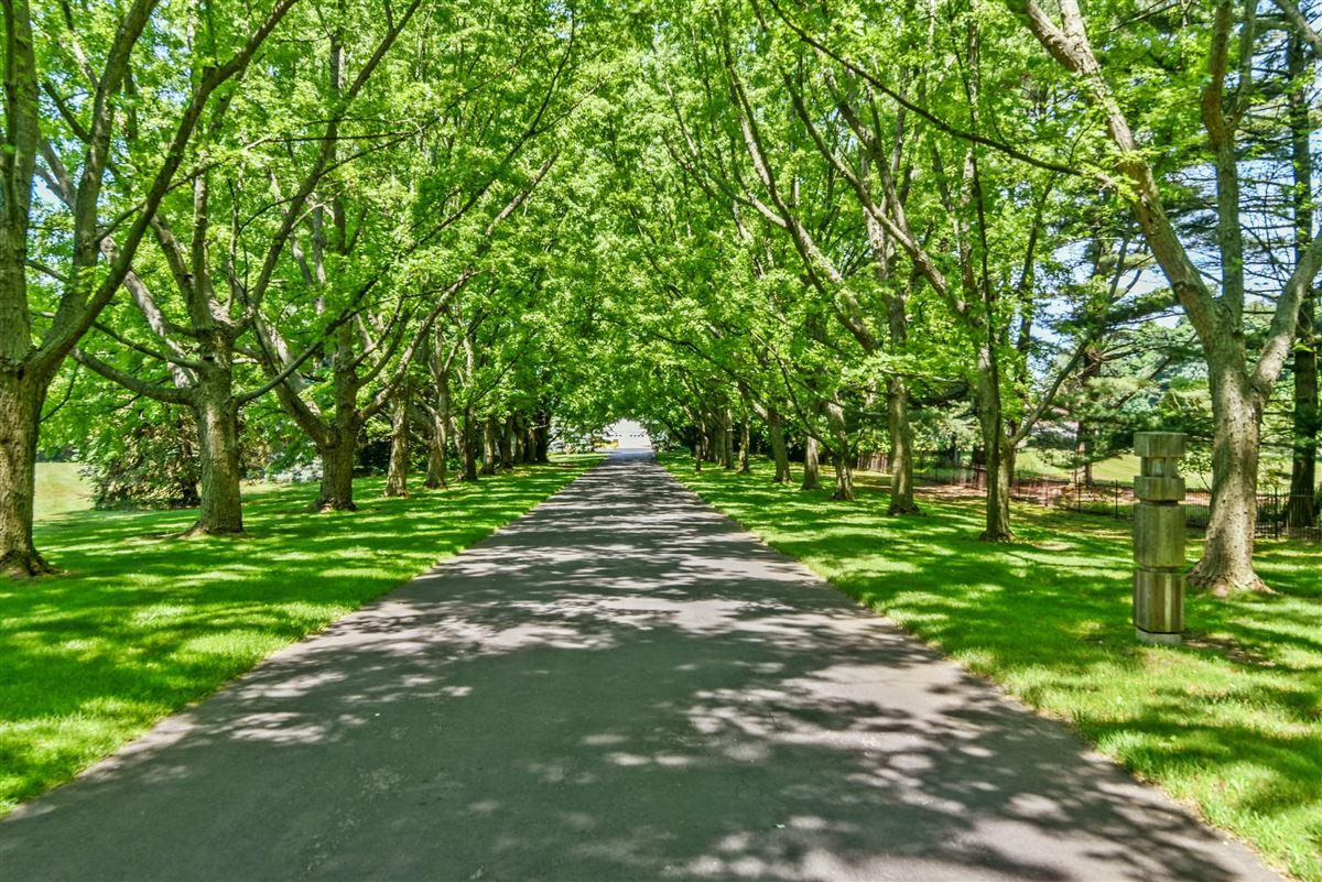Luxury homes Green Gate