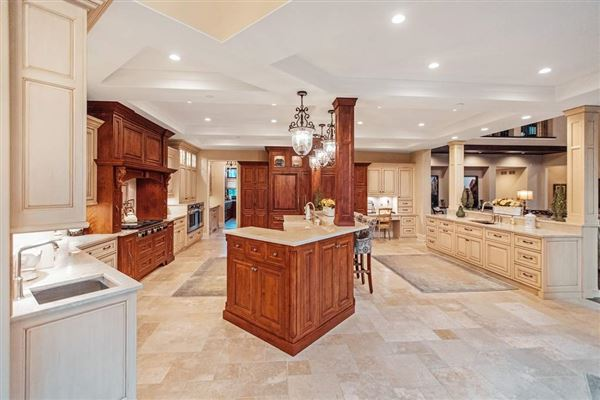 Luxury properties grand estate with endless features