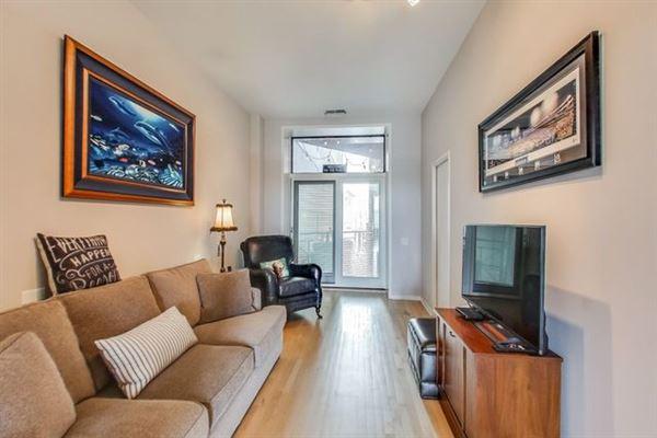 Luxury real estate Elegant condo in South Loop