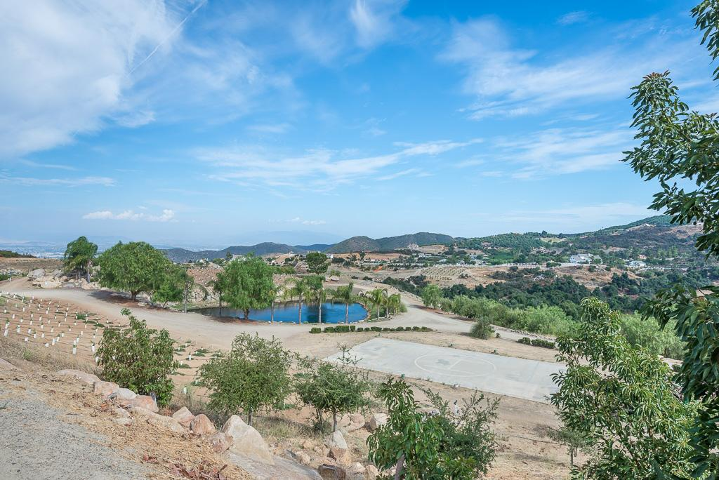Via Majorca Estate-Vineyard mansions