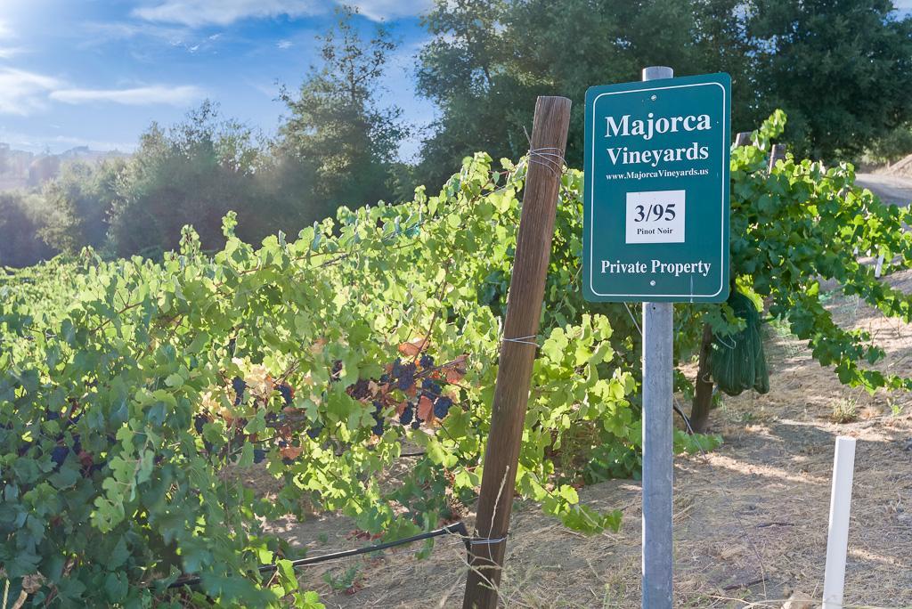 Via Majorca Estate-Vineyard luxury real estate